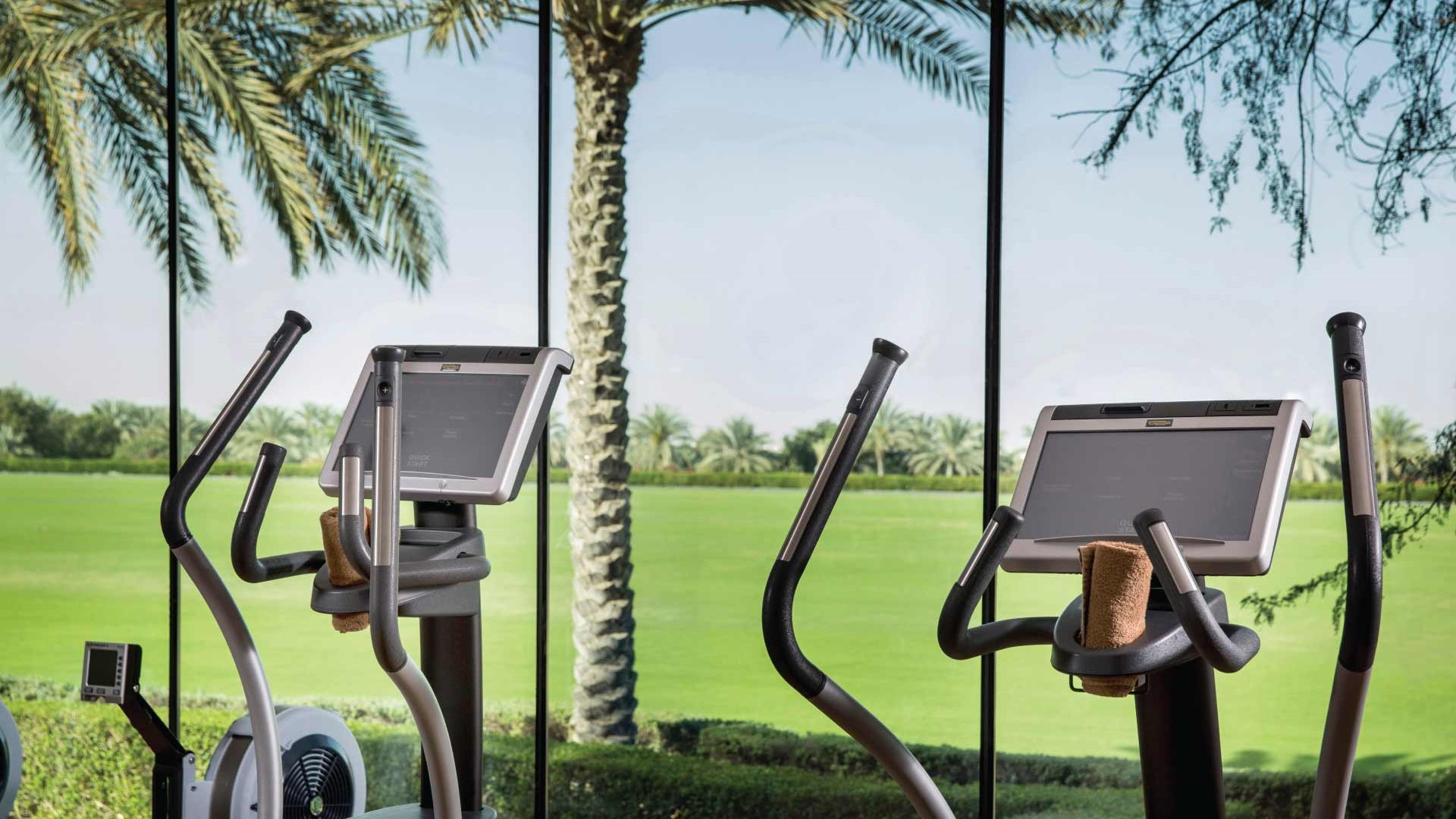 Desert-Palm-Gym-View
